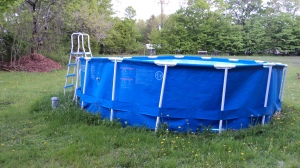 Goodbye, blue pool. I will drive the two miles to the lake this year.